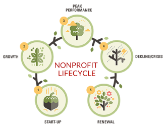 Circular graphic showing the steps of the nonprofit lifecycle using the metaphor of an acorn growing into a tree.
